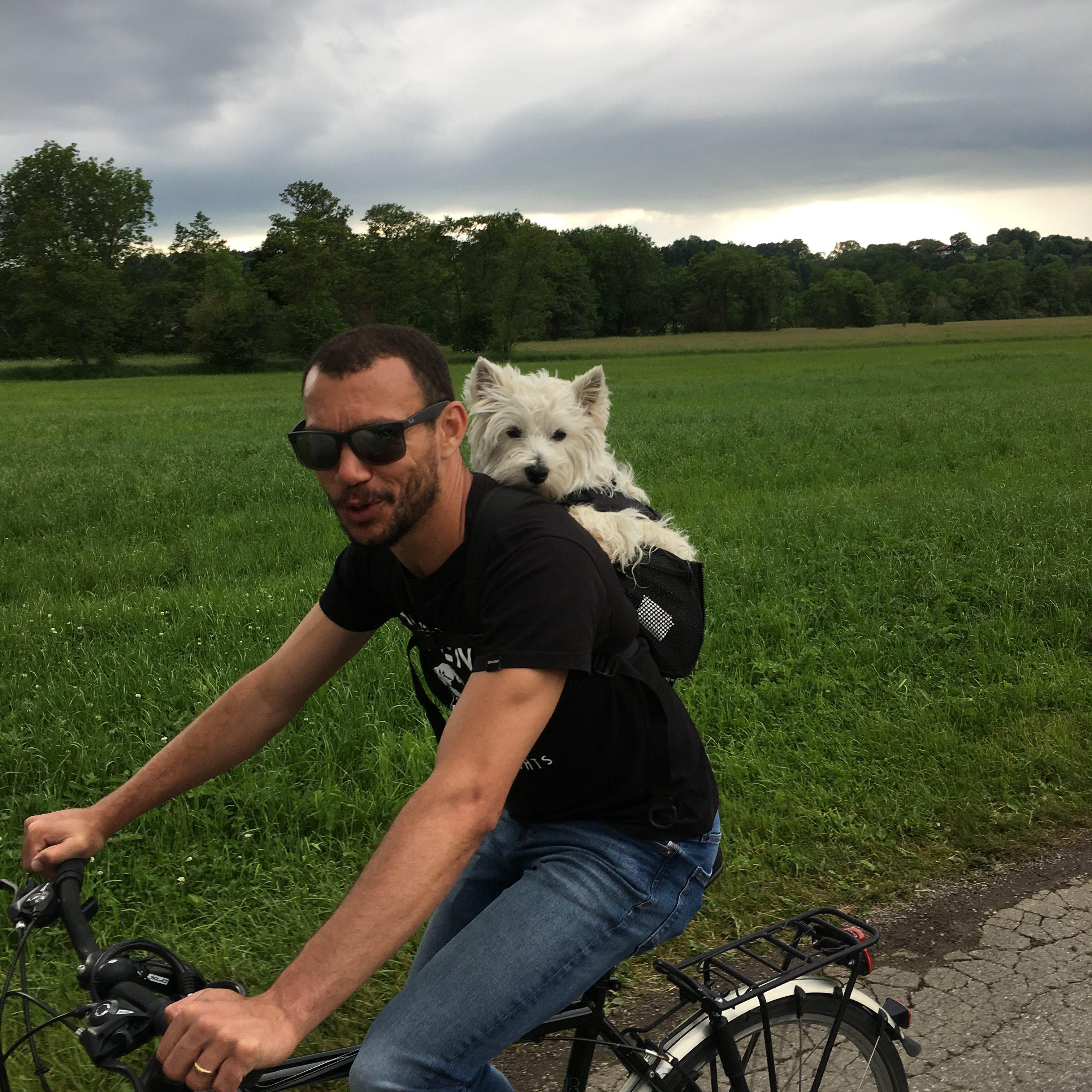 Mann mit Hund auf dem Fahrrad