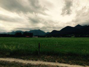 Berge und Wiese im Vordergrund