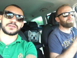 2 Männer und 1 Hund im Auto
