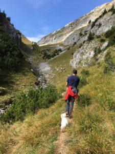 Man und Hund gehen den Berg hinauf