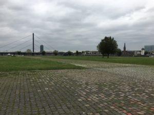 Wiese am Rheinufer