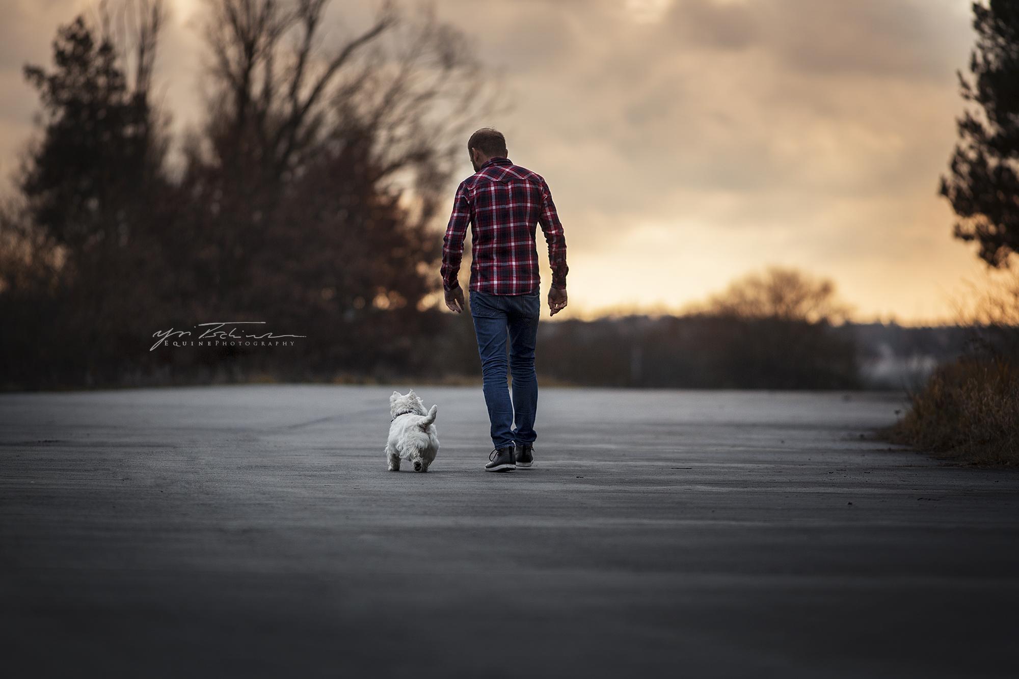 Hund und Halter gemeinsam unterwegs