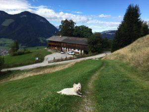 Das Haus des Bergdoktor